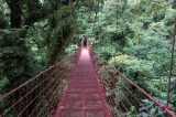 PIC-Hanging-Bridge-in-cloudforest-Costa-Rica